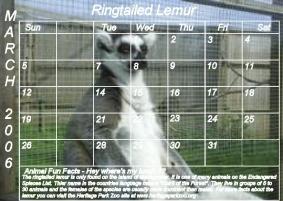 Lemur_14.jpg
