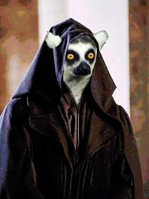 Lemur_5.jpg